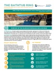 The Bathtub Ring. Shrinking Lake Mead: Impacts on Water Supply, Hydropower, Recreation and the Environment